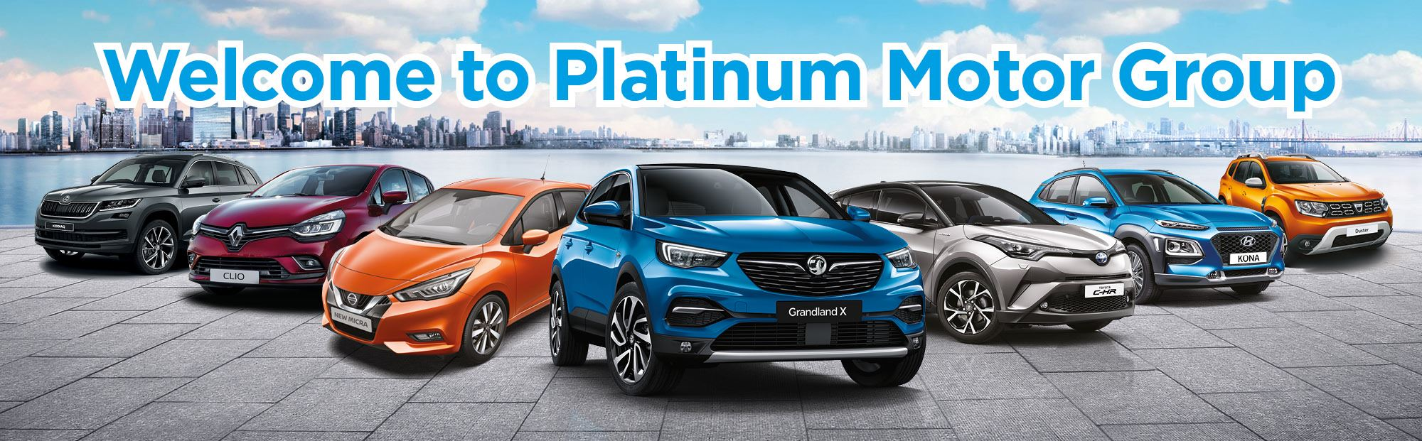 Platinum Motor Group